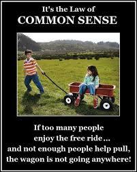 Common Sense Meme - common sense flyover culture