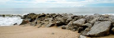 edisto beach rentals edisto island rentals edisto beach
