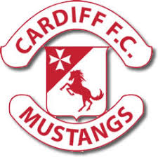 mustang soccer cardiff competitive soccer program mustangs cardiff soccer by