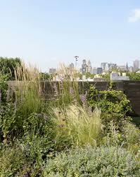 ask the expert roof garden basics with designer julie farris