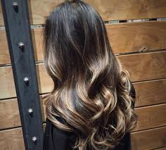 long brown hairstyles with parshall highlight 55 stylish highlights for black hair rock your locks