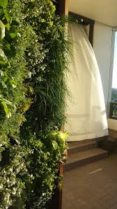 herb wall cleveland u0027s flowers u0026 gardens u2013 vertical garden specialists