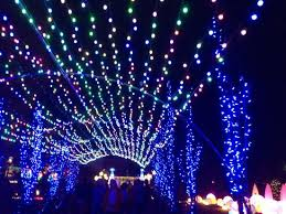 phipps conservatory christmas lights photo1 jpg picture of phipps conservatory and botanical gardens