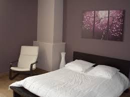 chambre adulte parme chambre peinture pour chambre adulte chambre amis photos tyrsia