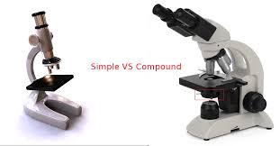 compound light microscope uses difference between archives microscope heroes