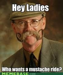 Funny Mustache Memes - 25 best moustache memes images on pinterest moustaches moustache