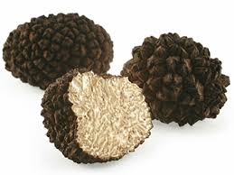 italian truffles food trends