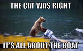 Cat Meme Boat - looks like the cat was right the meta picture