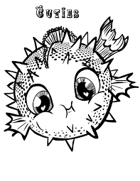 puffer fish coloring page 28 images coloring pictures of
