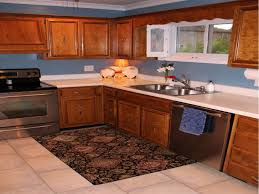 Kitchen  Kitchen Runner Rugs Padded Kitchen Mats Decorative - Kitchen sink rug