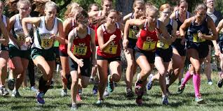 2017 chittenden county h s cross country running outlook