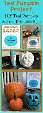 the teal pumpkin project diy pumpkin and free printable sign the