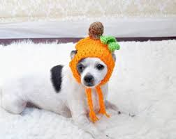Dog Costume Halloween Baby Dog Costume Etsy