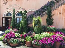hanging basket plants for sun co horts bringing home the magic of disney horticulture and a