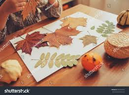 royalty free preparations for autumn craft with kids u2026 423132934