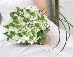 of bethlehem flower beautiful of bethlehem bridal bouquet global