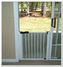 Vinyl Pet Patio Door Ideas Patio Door With Door Built In Or In X In Medium White