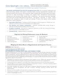 simple resume format sle documentation of inventory format for resume in information security therpgmovie