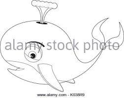 cartoon whale line drawing vector illustration stock vector art