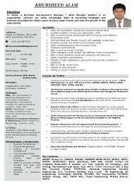 sample resume international business resume for business development manager business development