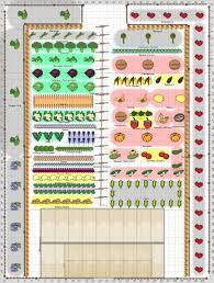 Garden Layout by Vegetable Garden Spacing