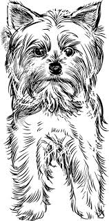 sketch dog design vector free vector in adobe illustrator ai ai