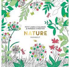 Livre de coloriages Marabout Nature  La Fourmi creative