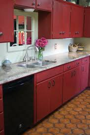 Custom Painted Kitchen Cabinets Kitchen Red Chalk Paint Cabinet For Kitchen Feat Black