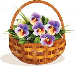 flowers pansies in a small basket stock vector art 165588333 istock