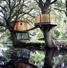 cool tree houses tree houses here u0027s a cool tree house with a bri