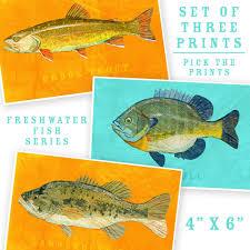 freshwater fish art series collection john w golden art fish artwork 3 little fishies set of