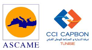 chambre de commerce tunisie la chambre de commerce du cap bon préside la commission femmes
