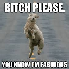Bitch Im Fabulous Meme - bitch please you know i m fabulous skipping lamb quickmeme