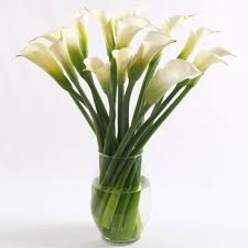 Calla Lily Flower Delivery - lily flower arrangement
