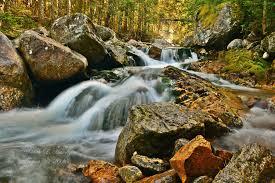 Mount Washington Trail Map by Best Trails In Mt Washington State Park Alltrails Com