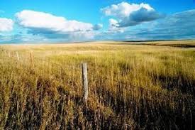 The Interior Plains Climate The Best Damn Thing