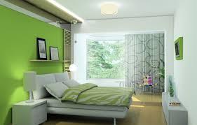 lime green decor home design ideas