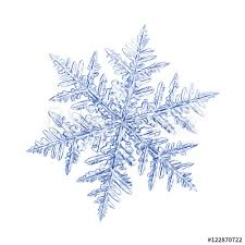 pencil drawing blue snowflake on white background this sketch