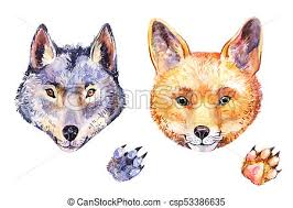 watercolor fox and wolf s potrait stock