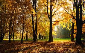 autumn season wallpapers hd wallpapers