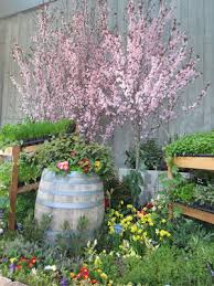 beatrice euphemie northwest flower and garden show