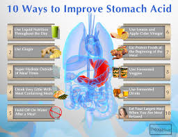 using a ketogenic diet for hypothyroid drjockers com