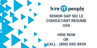 Sap Sd Consultant Resume Sample by Senior Sap Sd Le Consultant Resume Hire It People We Get It Done