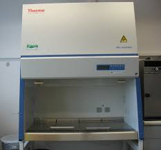thermo fisher biosafety cabinet thermo biosafety cabinets functionalities net