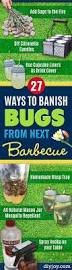27 ways to banish bugs from next barbecue roaches ant and yards