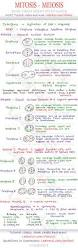 the 25 best microbiology ideas on pinterest med student dna