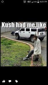 Top Ten Funny Memes - top 10 funny marijuana memes at weed memes 2015 weed memes