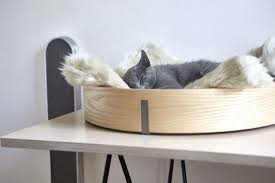 chic and cozy cat beds 20 modern ideas
