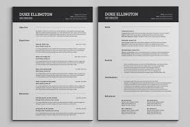 pages resume template 5 one page nardellidesign com