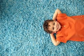 reputable carpet cleaning mesa and gilbert